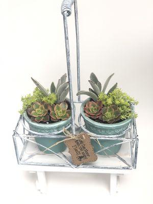Succulents arrangement for Sale in Monterey Park, CA