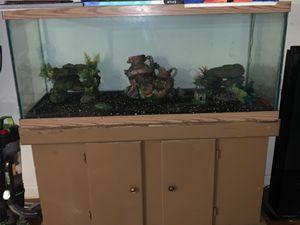 $150 - 75 gallon fish tank and stand for Sale in Richmond, VA