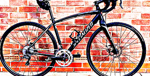 FREE bike sport for Sale in Chaseley, ND