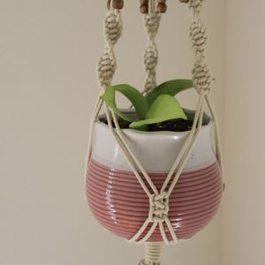 Beautiful Macrame Hanging Pothos Plant for Sale in Wilmington, CA