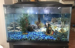 10 gallon fish tank. All you need to get started but the fish! for Sale in Severna Park, MD