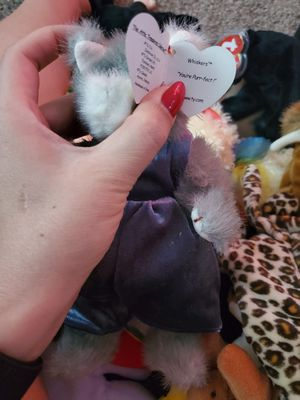 Whiskers the cat TY beanie baby for Sale in Salt Lake City, UT