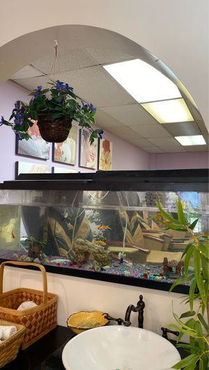 Two big 55' fish tanks for Sale in Columbia, MD