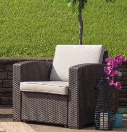 Clifford Faux Patio Chair w/ Cushion for Sale in Los Angeles,  CA