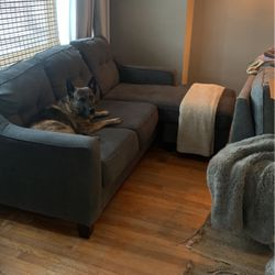 Free Couch - Dog Not Included for Sale in Chicago,  IL