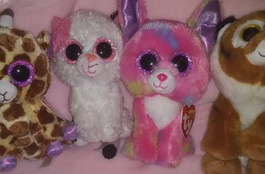 Beanie Boos for Sale in Goffstown,  NH