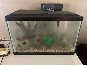 10 Gallon Fish Tank - Used for Sale in North Potomac, MD