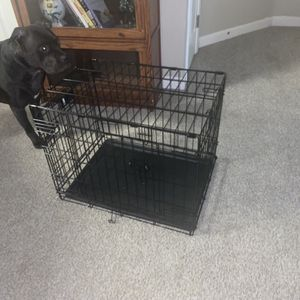 Small Dog Crate $40 Only Used Once for Sale in Vacaville, CA
