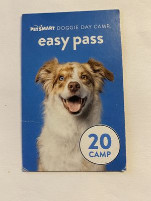 Doggie Day Camp pass for Sale in Deerfield Beach, FL