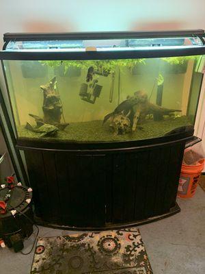 72 Gallon Bowfront Aquarium for Sale in Savannah, GA