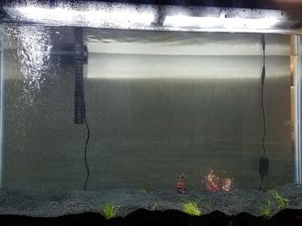 40 Gallon Aquarium for Sale in Tampa,  FL