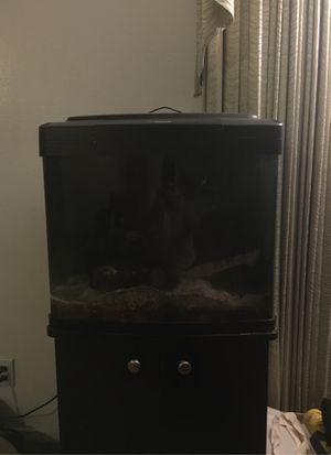 BIOCUBE 29 BEST OFFER ASAP for Sale in Oakland, CA