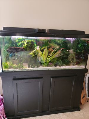 40gal Fish tank, decor, and equipment for Sale in San Diego, CA