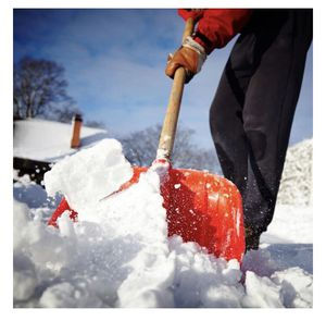 Snow Removal (Springfield and Annandale) for Sale in North Springfield, VA