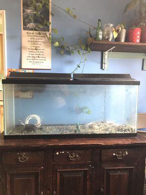 Fish tanks for Sale in Bailey's Crossroads, VA