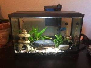 5 gallon tank for sale $20 for Sale in Sioux Falls, SD