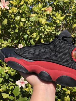 Bred 13s for Sale in Gardena,  CA