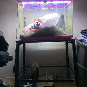 Fish Tank for Sale in South Gate, CA