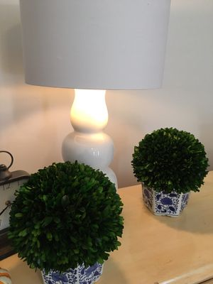Two topiary trees for Sale in Clarendon Hills, IL