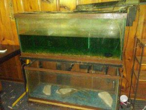 Fish tanks 75gal 55gal with stand and all the accessories for both tanks for Sale in Nashville, TN
