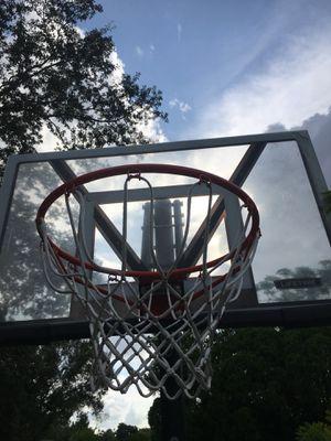 Life time basketball hoop for Sale in St. Petersburg, FL