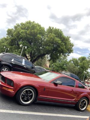 Ford Mustang bullitt style wheels black for Sale in Hialeah, FL