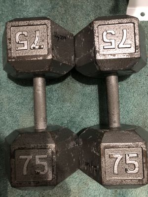 75 lbs dumbbells for Sale in Everett, WA