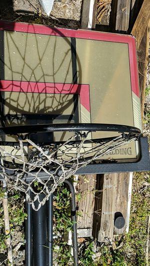 Basketball hoop for Sale in Golden Oak, FL