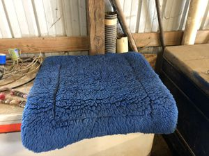 Blue saddle pad for Sale in Eolia, MO