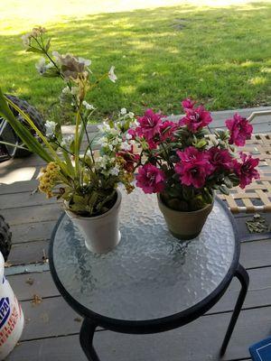 Fake plants for Sale in Kingsburg, CA
