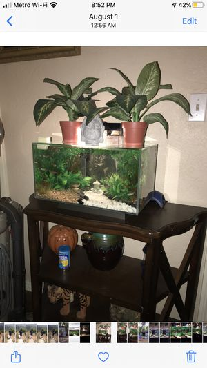 Fluval edge 7 Gallon Rimless Fishtank for Sale in Inglewood, CA