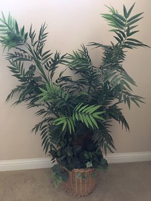 Artificial Plant / fake plant for Sale in Chandler, AZ