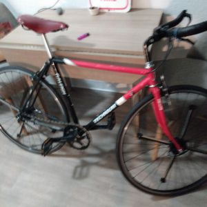 Raleigh for Sale in Houston, TX