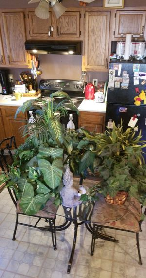 7 artificial plants in baskets for Sale in Providence, RI