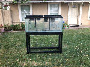 55 gallon fish tank for Sale in Phoenix, AZ