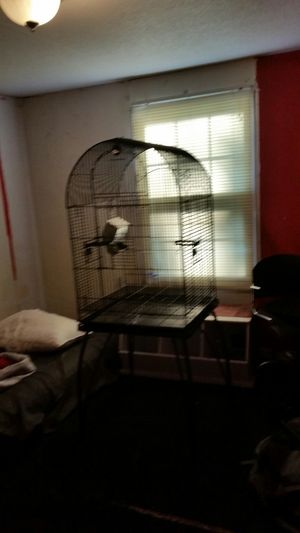 Bird cage for Sale in Kenly, NC