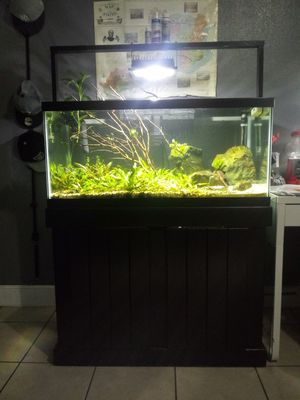 Fish tank for Sale in Elk Grove, CA