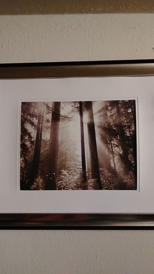 """Framed image """"Heavens light through the trees"""" w\ hidden images. Relax & stare as images start to emerge from this soothing image. let go for $30.00. for Sale in Union City, CA"""