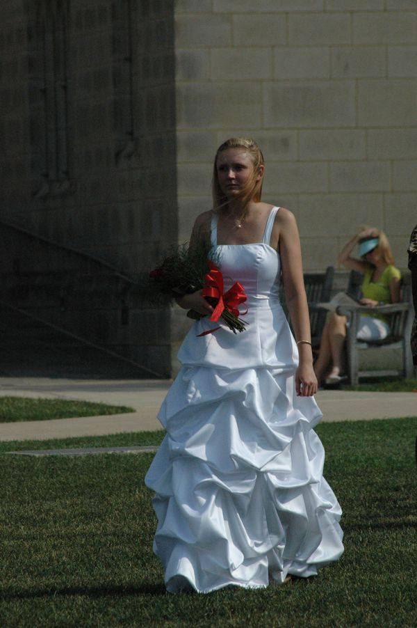 Davids prom dress or bridal gown