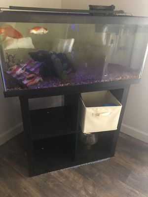 60 gal fully equipped fish tank w/ stand for Sale in Salt Lake City, UT