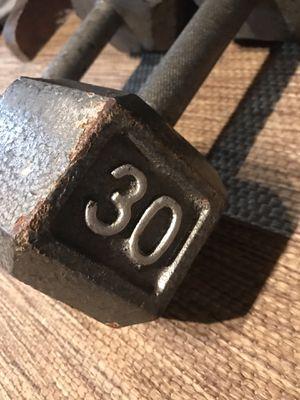 Two 30lb dumb bells for Sale in Oakland, FL