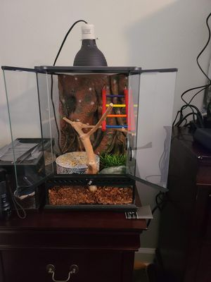 Exo Terra Cage and Supplies for Sale in Norfolk, VA