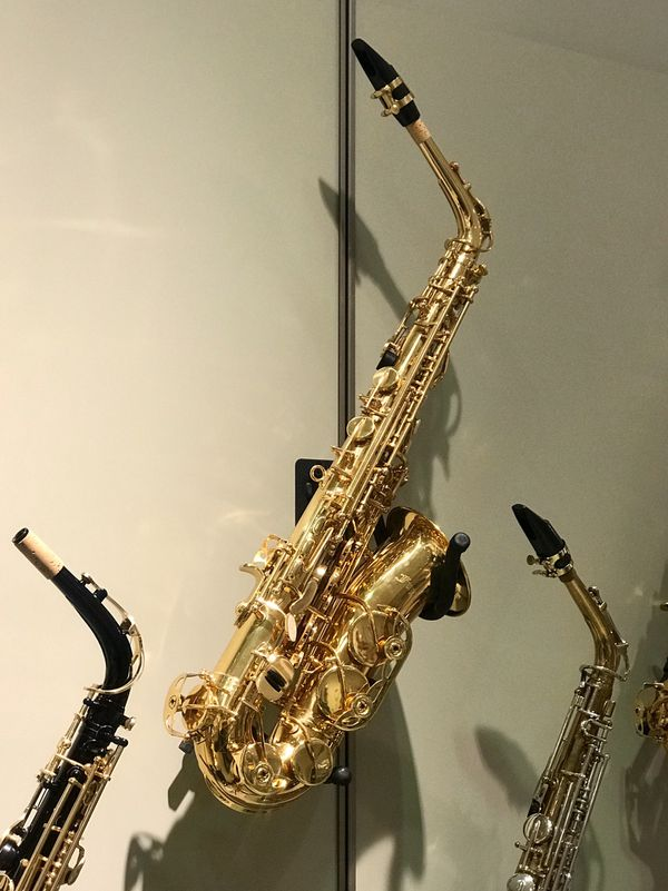 ***LIMITED TIME CLEARANCE*** Student Series Alto Saxophone
