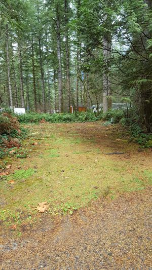 RV Site not far from activities for Sale in Gold Bar, WA