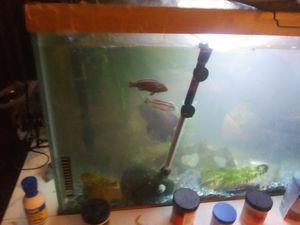 Nice 250 gallon fish tank for sale for Sale in Columbus, OH