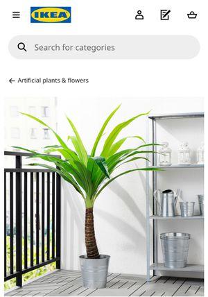 IKEA artificial plants w/ plat pots for Sale in St. Petersburg, FL