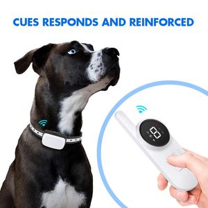 1000 (feet) Waterproof Rechargeable Dog shock remote Dog training collar for Sale in Grand Rapids, MI