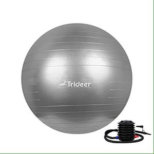 trideer exercise ball 65 cm silver for Sale in Miami, FL