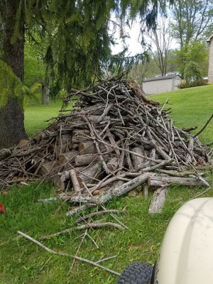 Firewood for free for Sale in NO HUNTINGDON, PA