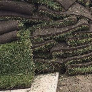 New Fresh Sod $3 dollars Square Foot for Sale in Los Angeles, CA